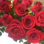 valentines-day-roses-3-image-courtesy-of-wikipedia-commons