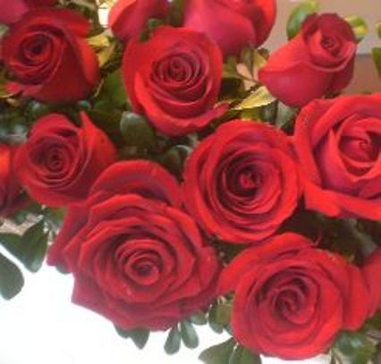 Happy Valentine's Day!  Valentine's Day Roses (Image courtesy of Wikipedia Commons)